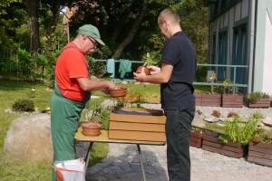 Dwóch mężczyzn stoi przy stole na którym znajduje się drewniana skrzynka i wkłada rośliny w plastikowe doniczki