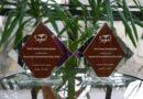 statuetki Opiekunka Środowiskowa Roku