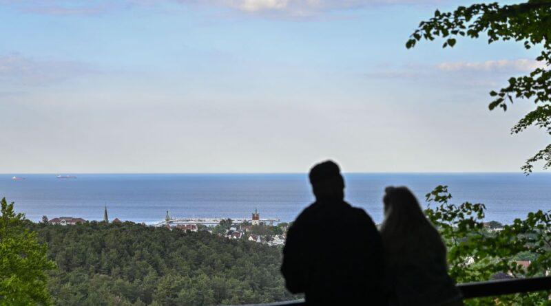 dwie osoby stoją tyłem i oglądają widok na las i morze